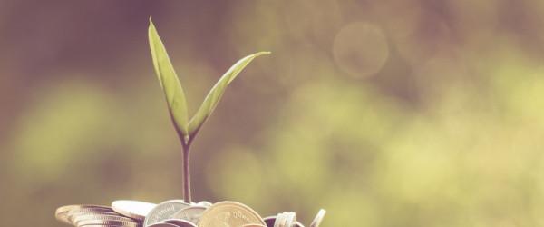 Rozwój biznesu ilustracja, roślinka rośnie na pieniądzach